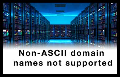 Non-ASCII domain names not supported. To issue for an Internationalized Domain Name, use Punycode